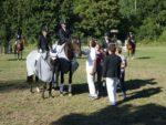Pferde_003